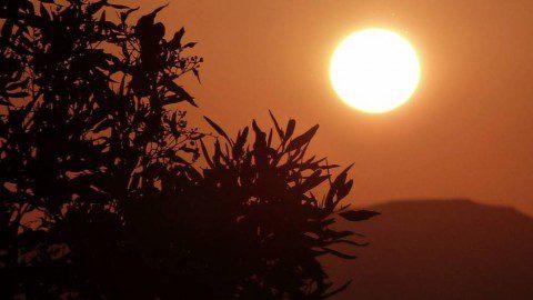 Кайтинг в Египте — новые места. Поездка в Эль Гуну.
