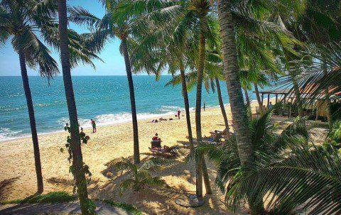 Привет из Вьетнама. Live дневник из под пальмы.