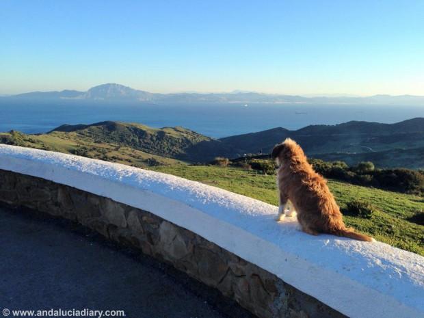 Andalucia-Atlantic-Coast-Tarifa-Andrew-Forbes-6